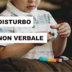 Disturbo dell'apprendimento non verbale (DANV)