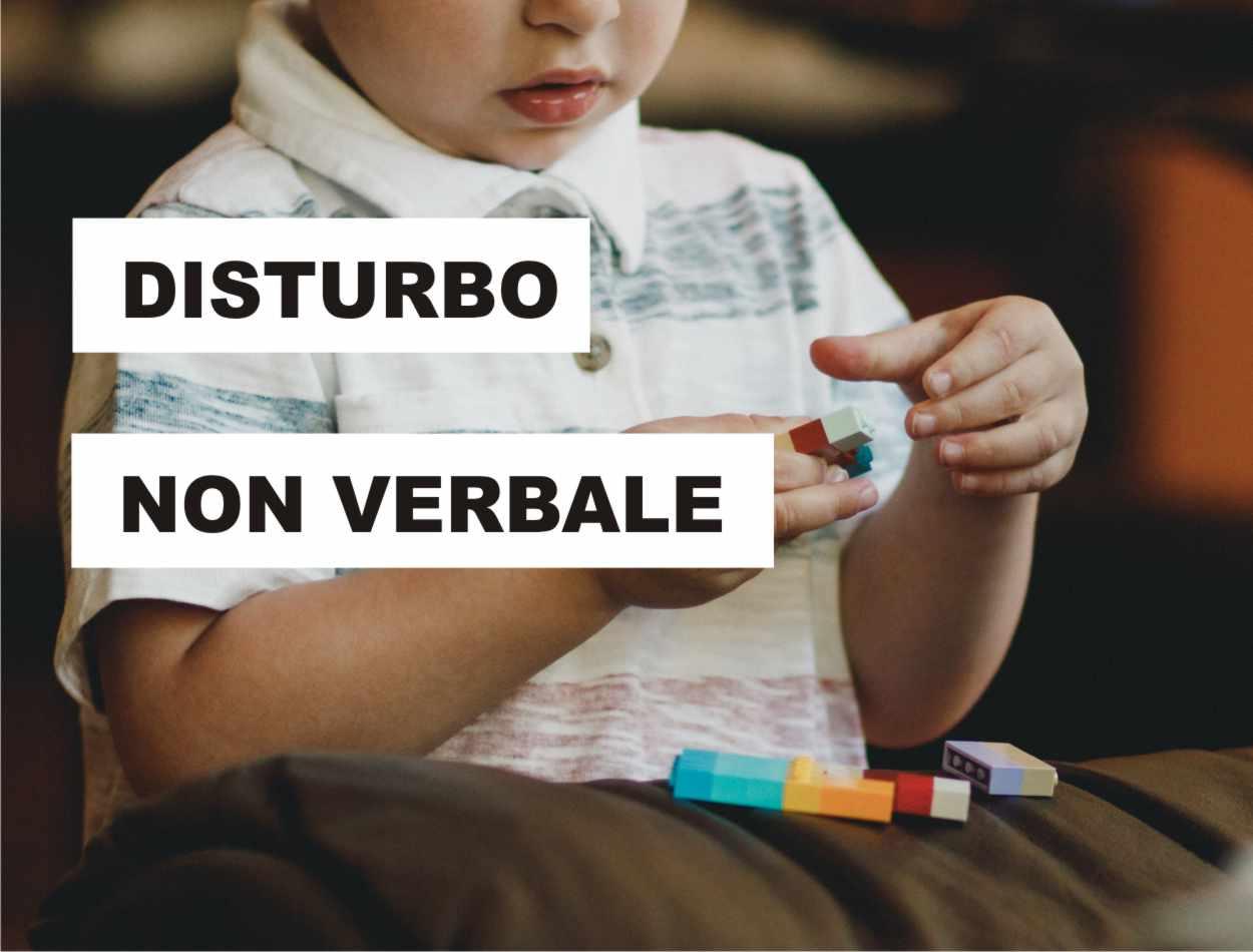 disturbo dell'apprendimento non verbale